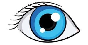 Auge, sehen